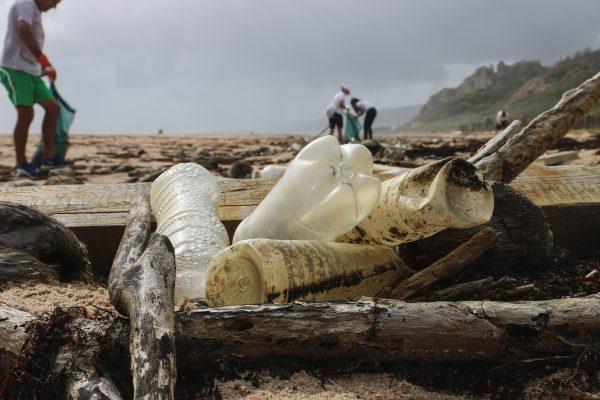 Wie kommt Plastik ins Meer
