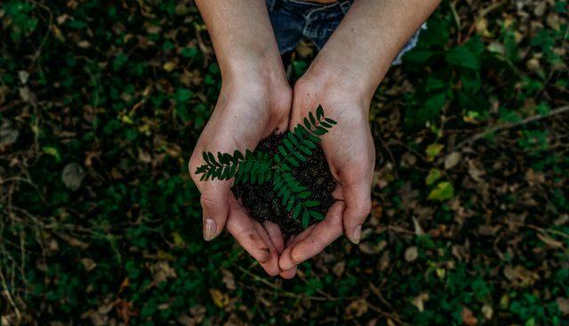 Welches Verhalten ist umweltbewusst